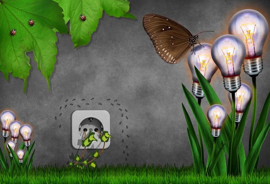 Environmental Friendly Electricity
